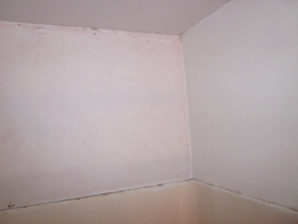 Mold and mildew and pink  not sure if it s pink mold or pink paint. 4100 Master Bathroom   Ta Da    Elisa s Ramblings